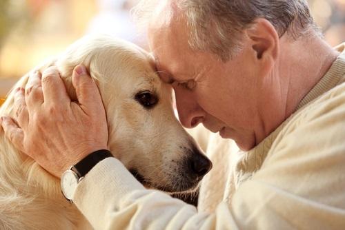 דיור מוגן – לגור עם בעלי חיים בגיל השלישי