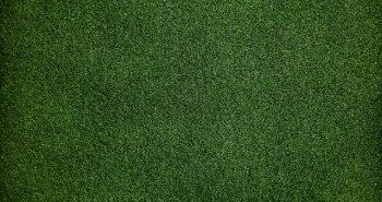כל האמת על דשא סינטטי מחירים